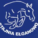 stajnia logo